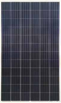 risen solar technology - Polikristály - 72 cella